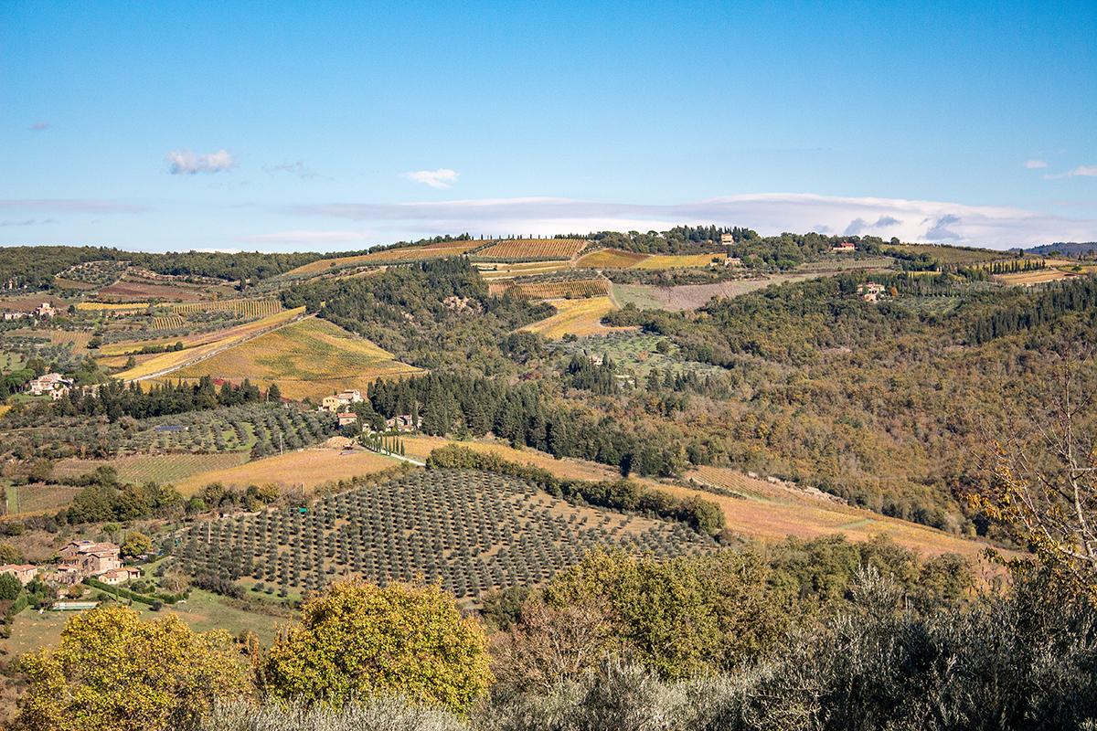 Chianti-Classico-territorio_Posate-Spaiate
