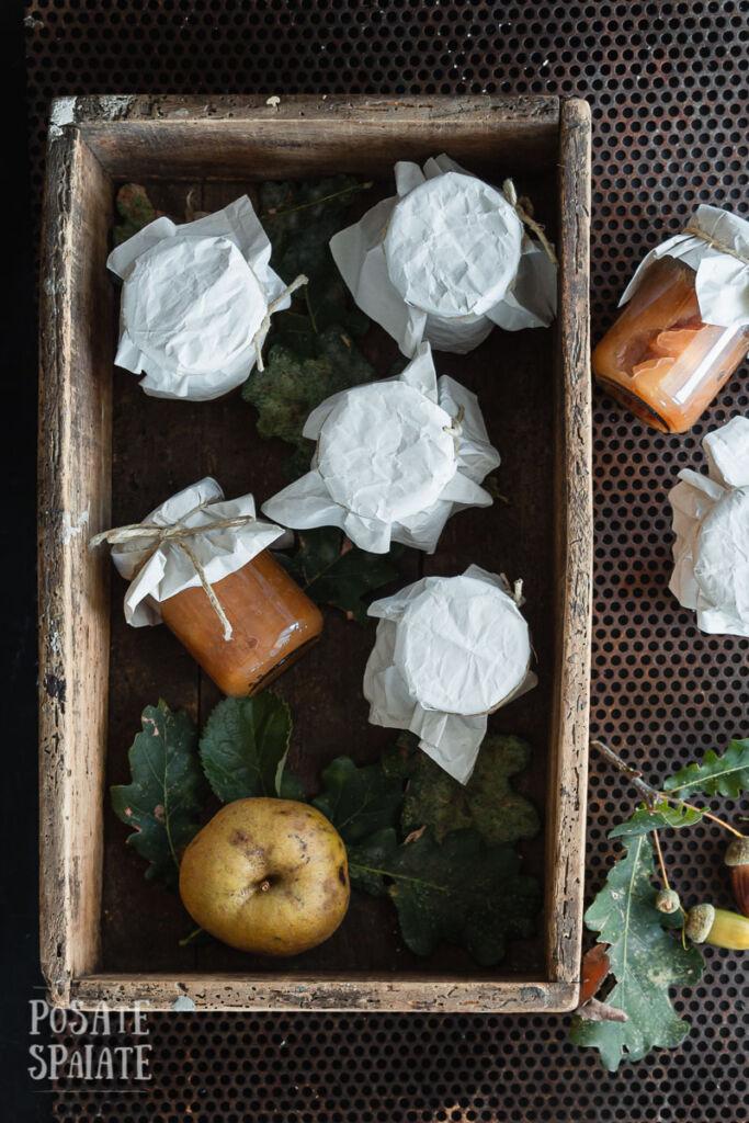 Composta mele e cipolle_Posate Spaiate